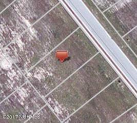 316 Lightning Bug Lane, Holly Ridge, NC 28445 (MLS #100050127) :: Star Team Real Estate