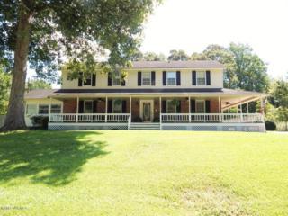 132 Brookview Drive, Jacksonville, NC 28540 (MLS #100050151) :: Century 21 Sweyer & Associates