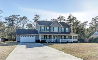 1515 Chadwick Shores Drive, Sneads Ferry, NC 28460 (MLS #100050277) :: Century 21 Sweyer & Associates
