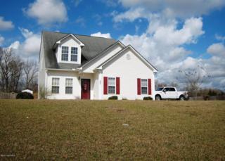 390 Rhodestown Road, Jacksonville, NC 28540 (MLS #100050312) :: Century 21 Sweyer & Associates