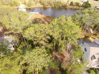 109 Sandy Huss Drive, Beaufort, NC 28516 (MLS #100051041) :: Century 21 Sweyer & Associates