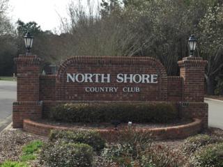 503 Seascape Drive, Sneads Ferry, NC 28460 (MLS #100051297) :: Century 21 Sweyer & Associates
