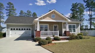 113 Farmstead Place, Maple Hill, NC 28454 (MLS #100051365) :: Century 21 Sweyer & Associates