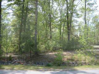 242 Riverbend Road, Jacksonville, NC 28540 (MLS #100051961) :: Century 21 Sweyer & Associates