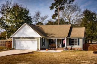 207 Chadwick Shores Drive, Sneads Ferry, NC 28460 (MLS #100052124) :: Century 21 Sweyer & Associates