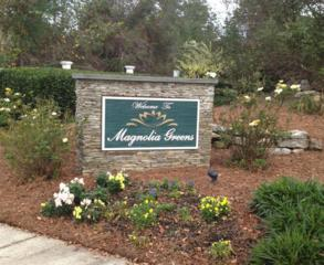 1356 Grandiflora Drive, Leland, NC 28451 (MLS #100052161) :: Century 21 Sweyer & Associates