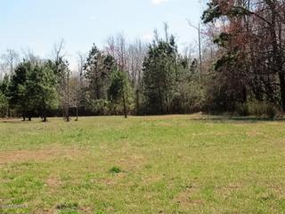 Lot 26 Eagle View Lane, Blounts Creek, NC 27814 (MLS #100052212) :: Century 21 Sweyer & Associates