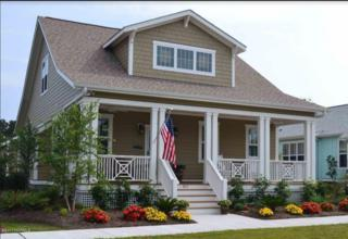 811 Cades Trail, Southport, NC 28461 (MLS #100052232) :: Century 21 Sweyer & Associates