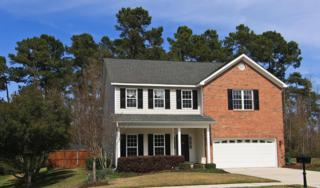 213 Longmeadow Drive, Wilmington, NC 28412 (MLS #100052252) :: Century 21 Sweyer & Associates