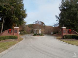 248 Joshuas Way, Southport, NC 28461 (MLS #100052417) :: Century 21 Sweyer & Associates