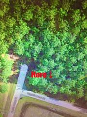 4709 Virginia Dare Drive, Washington, NC 27889 (MLS #100052526) :: Century 21 Sweyer & Associates