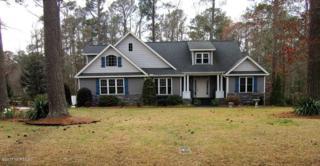 205 Appomattox Lane, Chocowinity, NC 27817 (MLS #100052881) :: Century 21 Sweyer & Associates