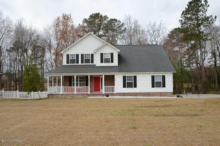 205 Lee Rogers Road, Hubert, NC 28539 (MLS #100052896) :: Century 21 Sweyer & Associates