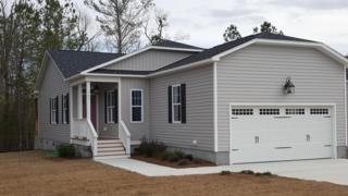 505 Jasmine Lane, Jacksonville, NC 28546 (MLS #100052908) :: Century 21 Sweyer & Associates