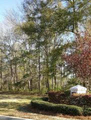8820 Fazio Drive, Wilmington, NC 28411 (MLS #100053060) :: Century 21 Sweyer & Associates