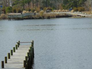Lot 6 Freshwater Drive, Blounts Creek, NC 27814 (MLS #100053221) :: Century 21 Sweyer & Associates