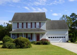 114 Steep Hill Drive, Swansboro, NC 28584 (MLS #100053227) :: Century 21 Sweyer & Associates