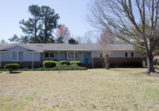 348 Semmes Drive, Wilmington, NC 28412 (MLS #100053284) :: Century 21 Sweyer & Associates
