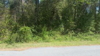 1180 Salem Drive NE, Leland, NC 28451 (MLS #100053299) :: Century 21 Sweyer & Associates