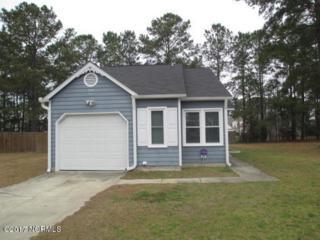 498 Hemlock Drive, Jacksonville, NC 28546 (MLS #100053316) :: Century 21 Sweyer & Associates