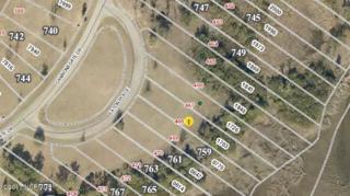 757 Eaton Place, Newport, NC 28570 (MLS #100053502) :: Century 21 Sweyer & Associates