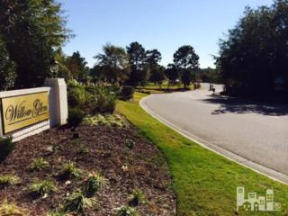 331 Ashworth Manor Court, Wilmington, NC 28412 (MLS #100053504) :: Century 21 Sweyer & Associates