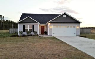 103 Cherry Ridge Court, Richlands, NC 28574 (MLS #100053520) :: Century 21 Sweyer & Associates
