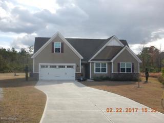 123 Cottle Court, Richlands, NC 28574 (MLS #100053613) :: Century 21 Sweyer & Associates