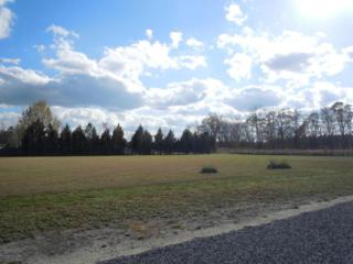 18-22 Taylor Drive, Clarendon, NC 28432 (MLS #100053622) :: Century 21 Sweyer & Associates