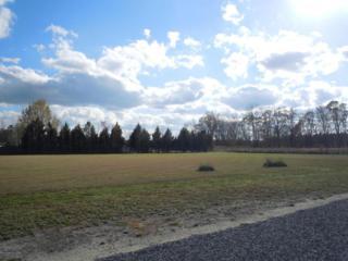 20 Taylor Lane, Clarendon, NC 28432 (MLS #100053638) :: Century 21 Sweyer & Associates