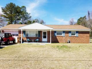 208 Ramsey Drive, Jacksonville, NC 28540 (MLS #100053744) :: Century 21 Sweyer & Associates