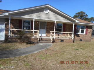 202 Belltown Road, Havelock, NC 28532 (MLS #100053843) :: Century 21 Sweyer & Associates