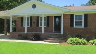 189 N Green Swamp Road N, Bolton, NC 28423 (MLS #100054223) :: Century 21 Sweyer & Associates