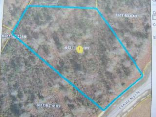 Lot 84 Eagle Trace Drive, Blounts Creek, NC 27814 (MLS #100054455) :: Century 21 Sweyer & Associates