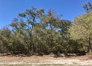 2204 W Oak Island Drive, Oak Island, NC 28465 (MLS #100054487) :: Century 21 Sweyer & Associates