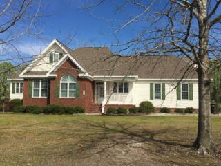 103 Springwood Drive, Wallace, NC 28466 (MLS #100054728) :: Century 21 Sweyer & Associates
