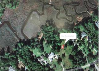 804 Cordgrass Road, Hampstead, NC 28443 (MLS #100054824) :: Century 21 Sweyer & Associates