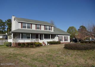 1324 Williamsburg Court, Wilmington, NC 28411 (MLS #100054886) :: Century 21 Sweyer & Associates