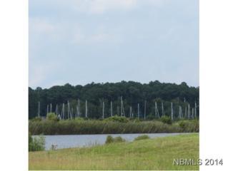 373 Wind Lake Road, Oriental, NC 28571 (MLS #100055012) :: Century 21 Sweyer & Associates