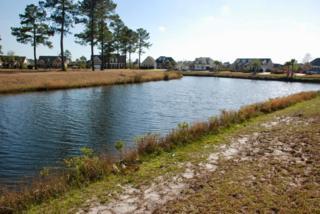 1006 Coralberry Court, Leland, NC 28451 (MLS #100055754) :: Coldwell Banker Sea Coast Advantage