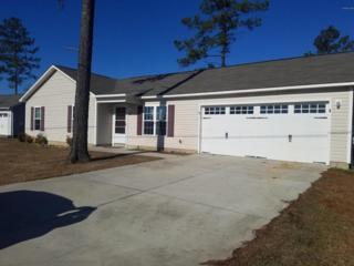 232 Sweet Gum Lane, Richlands, NC 28574 (MLS #100055976) :: Century 21 Sweyer & Associates