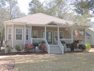 205 Dolphin Street, Cape Carteret, NC 28584 (MLS #100056635) :: Courtney Carter Homes