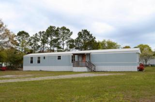 113 Sandy Shore Lane, Swansboro, NC 28584 (MLS #100058008) :: Courtney Carter Homes