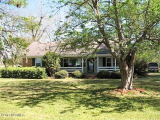 900 Lake Shore Drive, Lake Waccamaw, NC 28450 (MLS #100058181) :: Century 21 Sweyer & Associates