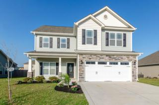 262 Merin Height Road, Jacksonville, NC 28546 (MLS #100058377) :: Courtney Carter Homes