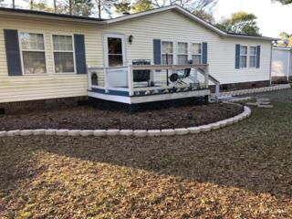 115 Star Fish Lane, Cedar Point, NC 28584 (MLS #100058499) :: Courtney Carter Homes