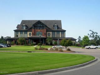 172 Sycamore Lakes Drive, Wallace, NC 28466 (MLS #100059383) :: The Keith Beatty Team