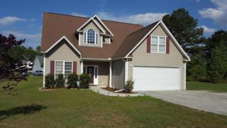 55 Morgan Cove Drive, Burgaw, NC 28425 (MLS #100059387) :: Century 21 Sweyer & Associates