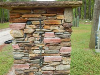 1379 Riverbend Drive, Burgaw, NC 28425 (MLS #100059495) :: Century 21 Sweyer & Associates