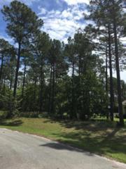 109 Forest Walk, Sunset Beach, NC 28468 (MLS #100059910) :: Century 21 Sweyer & Associates